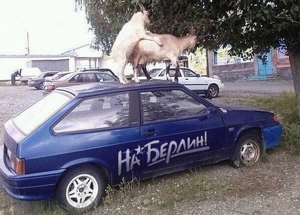 СБУ в Харькове провела обыск у экс-лидера местных коммунистов Александровской - Цензор.НЕТ 9146