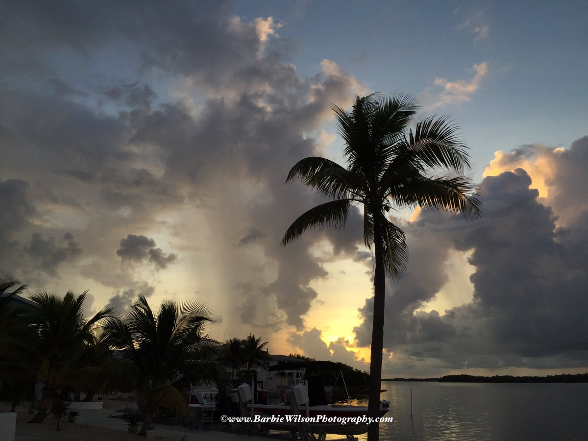 A dab of sunshine with a splash of rain starts Tues just right! GM #keywest #sunrise https://t.co/B5jMXYPvCk