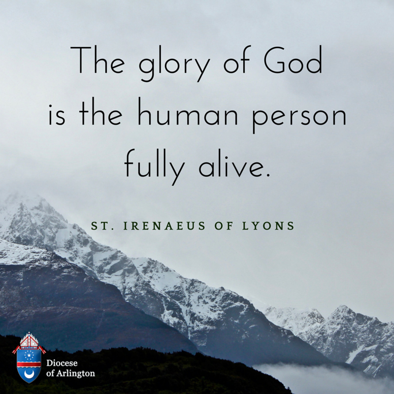 Diocese Of Arlington On Twitter The Glory Of God Is The Human