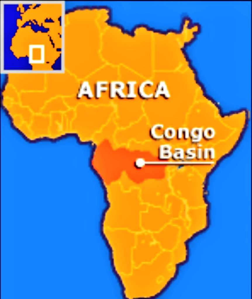 Congo Basin On Map Of Africa.Facts About Africa On Twitter 2 One Can Find 3 000 000 000 Plots