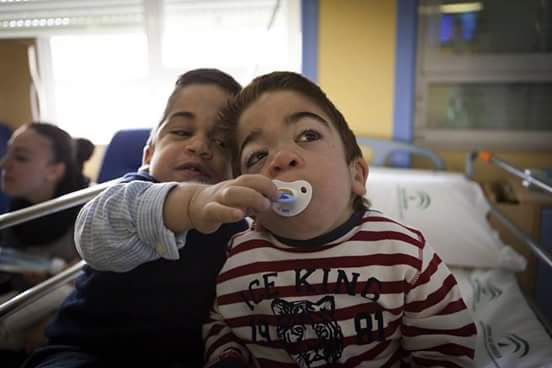Highlights of the issue of Science Translational Medicine December 1, 2010 | EurekAlert! Science News