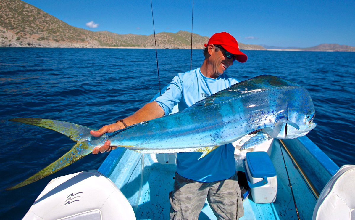 LOVE2FISH? Join us for #FishChat at 7P mdt TONIGHT! #fishing #flyfishing #Baja #Cabo https://t.co/Q1HIOvF2Ef