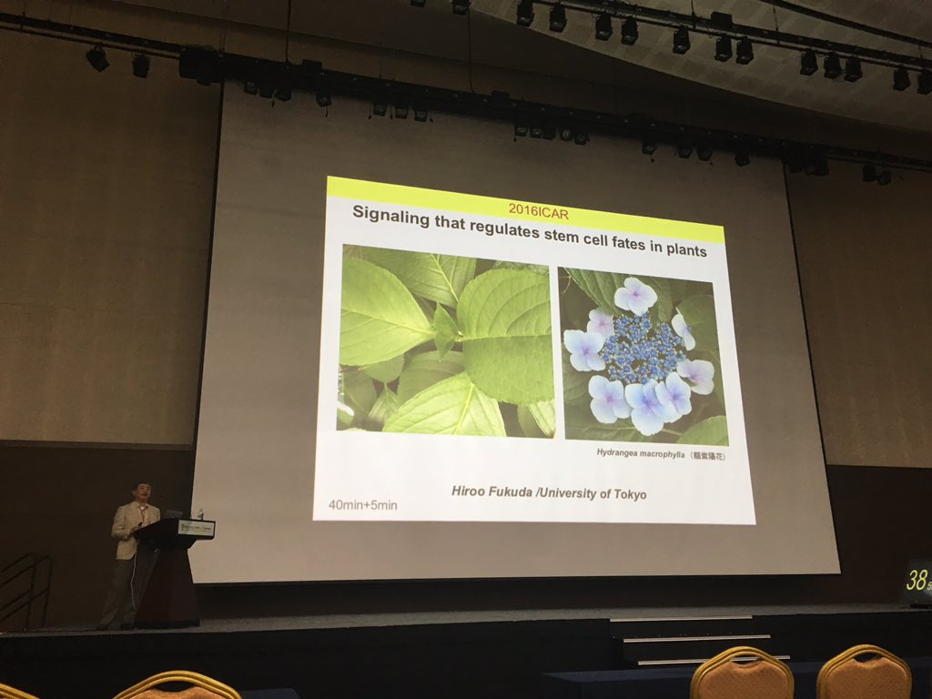 #icar_2016 2nd Day starts with Hiroo Fukuda discussing Stem Cell Fate in Plants https://t.co/jJ84AHeLhU