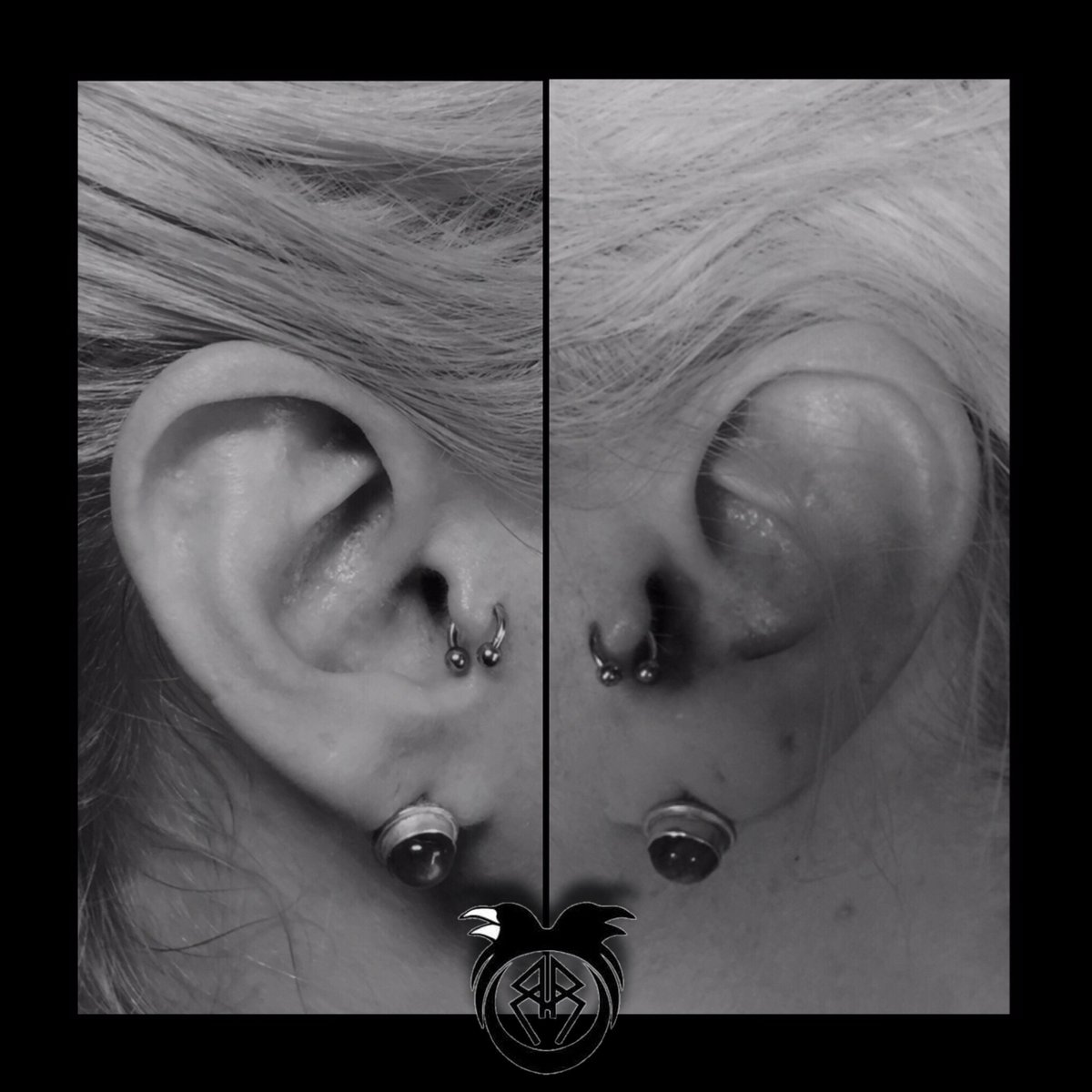 Rook X Raven Tattoo On Twitter Today S Piercings Are Half