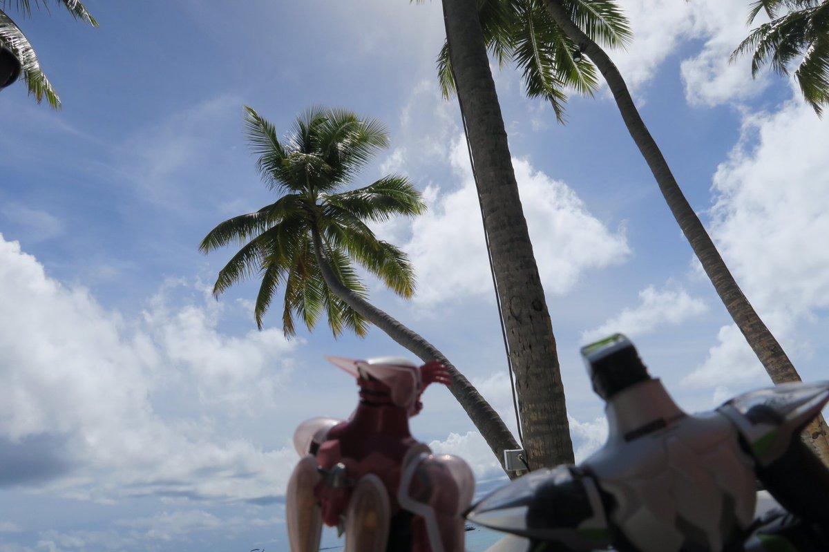 スナハマを走ったりパトロールしたり、忙しいバディ #タイバニ旅行部