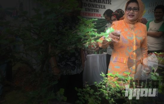 Pimpin Golkar, 2016 jadi Tahun Keemasan Imas Aryumningsih