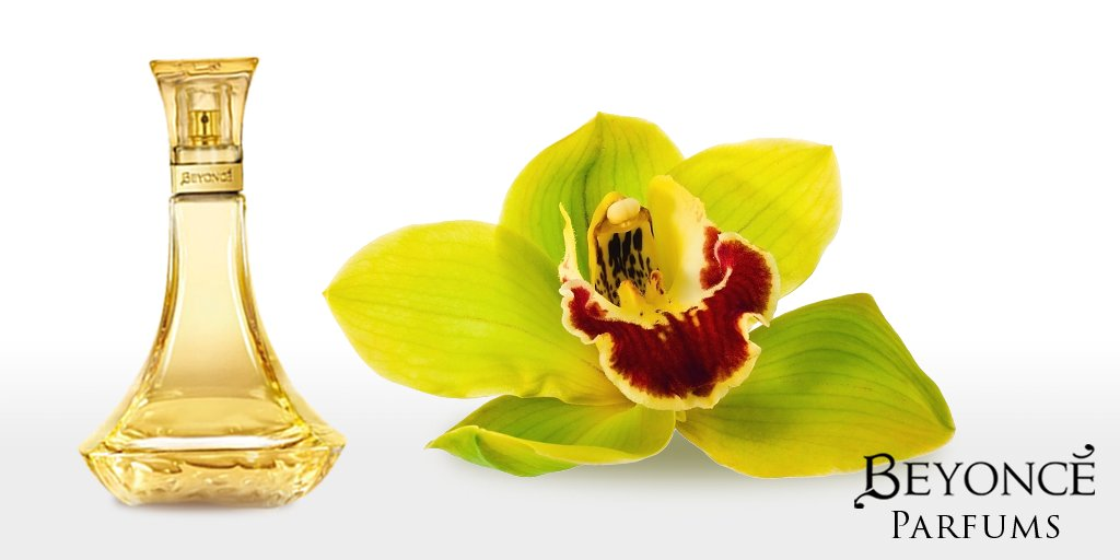 Experience the exotic scent of the African jungle trail orchid with #BeyoncéHeatSeduction https://t.co/GArdYvE3jD