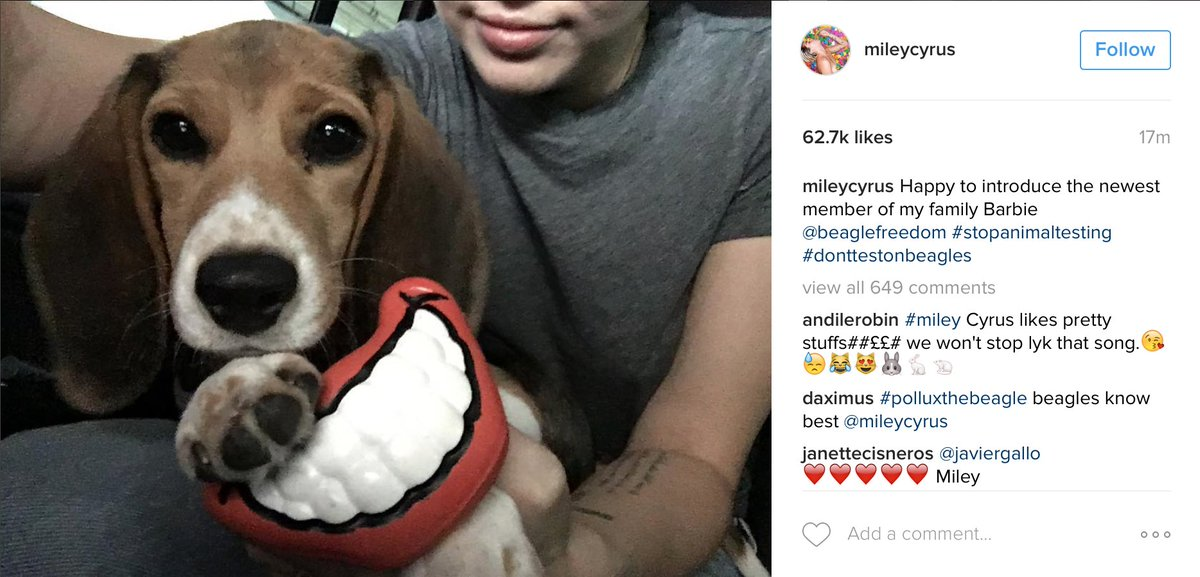 #BREAKING - BFP is thrilled to welcome @MileyCyrus to our BFP Family! Miley has just officially adopted our Barbie. https://t.co/SEXFDziTwy