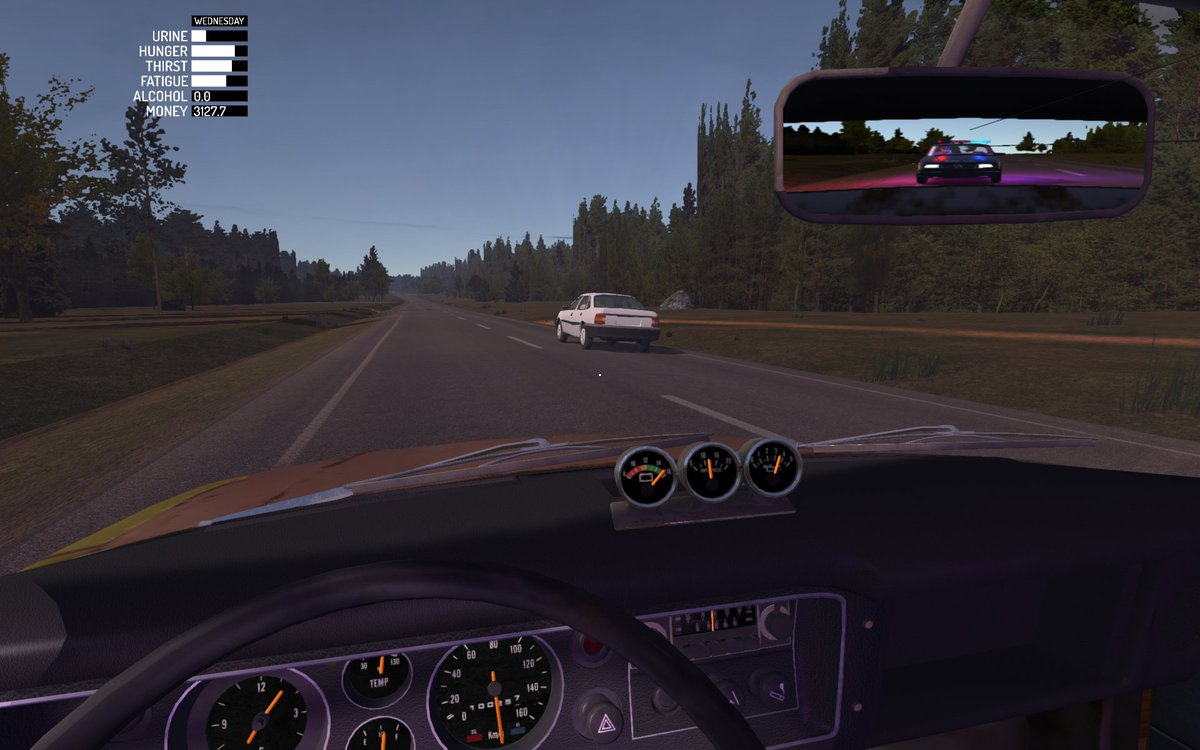 My Summer Car On Twitter Something Is Blocking My Rear View Mirror