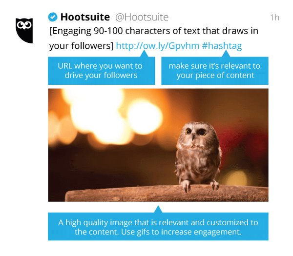 Hootsuite On Twitter You Cant Spell Twitter Without Wit