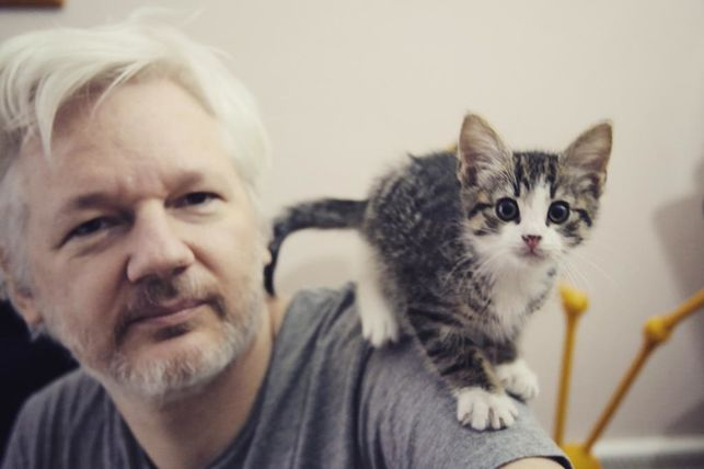 Happy 45th birthday to Julian Paul #Assange (born 3 July 1971). May you soon be free to wander this earth again. https://t.co/C7Lf2AGyXQ