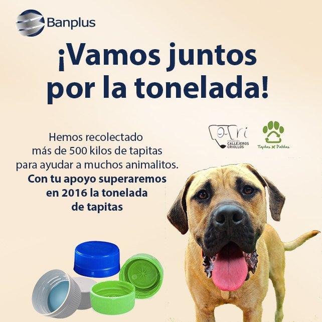 Campaña promovida por Banplus: ¡Vamor juntos por la tonelada!