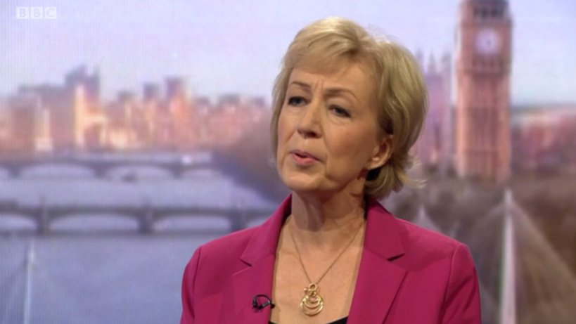 Andrea Leadsom refuses to rule out making Nigel Farage a government representative #Marr https://t.co/KOq32ls7sB https://t.co/SOVX4a2tO8