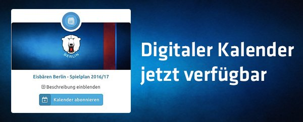 download Hydraulik der Gerinne und