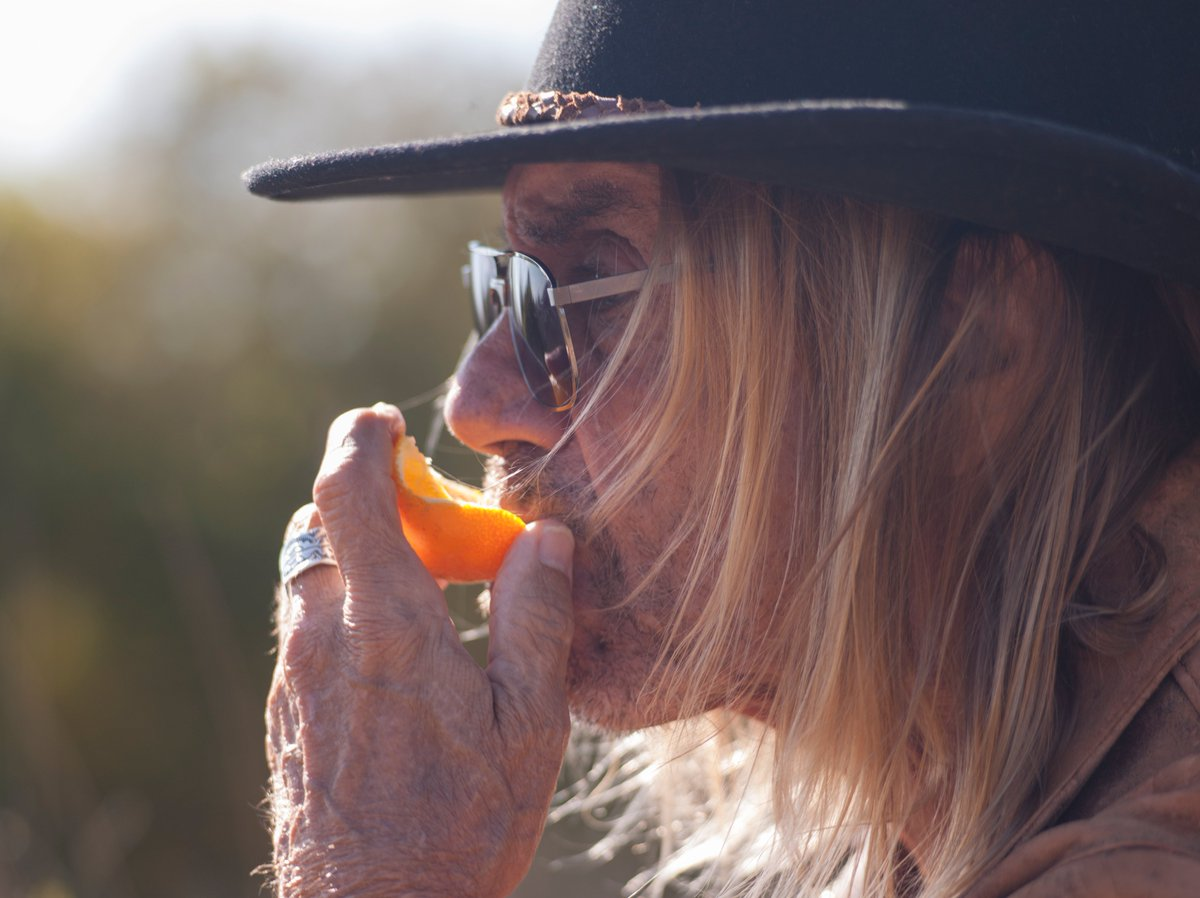 https://t.co/X1ANntC1vl the good reviews keep on coming for #IggyPop and @BloodOrangeFilm
