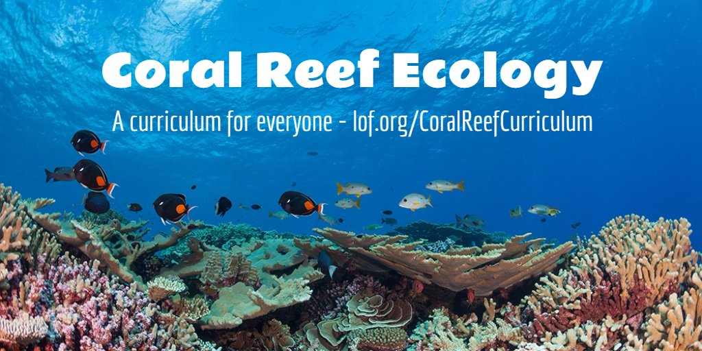 Innovative #coral reef education materials engage & inspire students https://t.co/JiiCxAnelW #NMEA16 #ISTE2016 https://t.co/u9K9ACqXQl