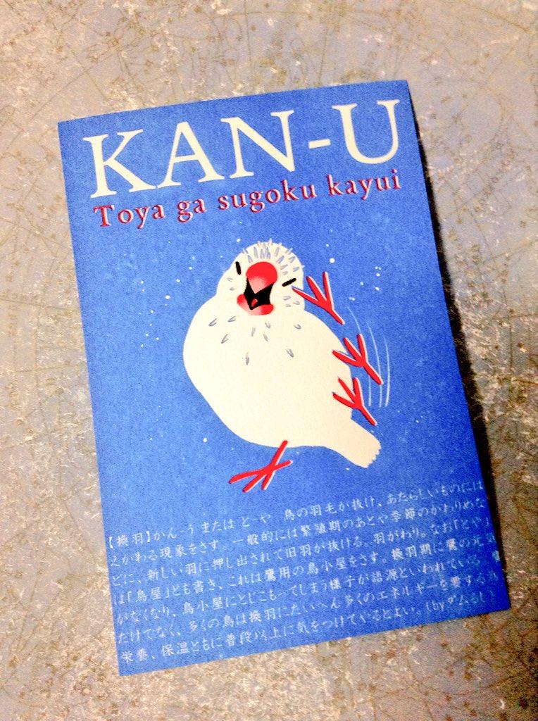 ぶんちょり用に作ったポストカードも仕上がりました!トヤにつやプリをしていただいたので、触るとチクチクツヤツヤします〜いい感じ〜