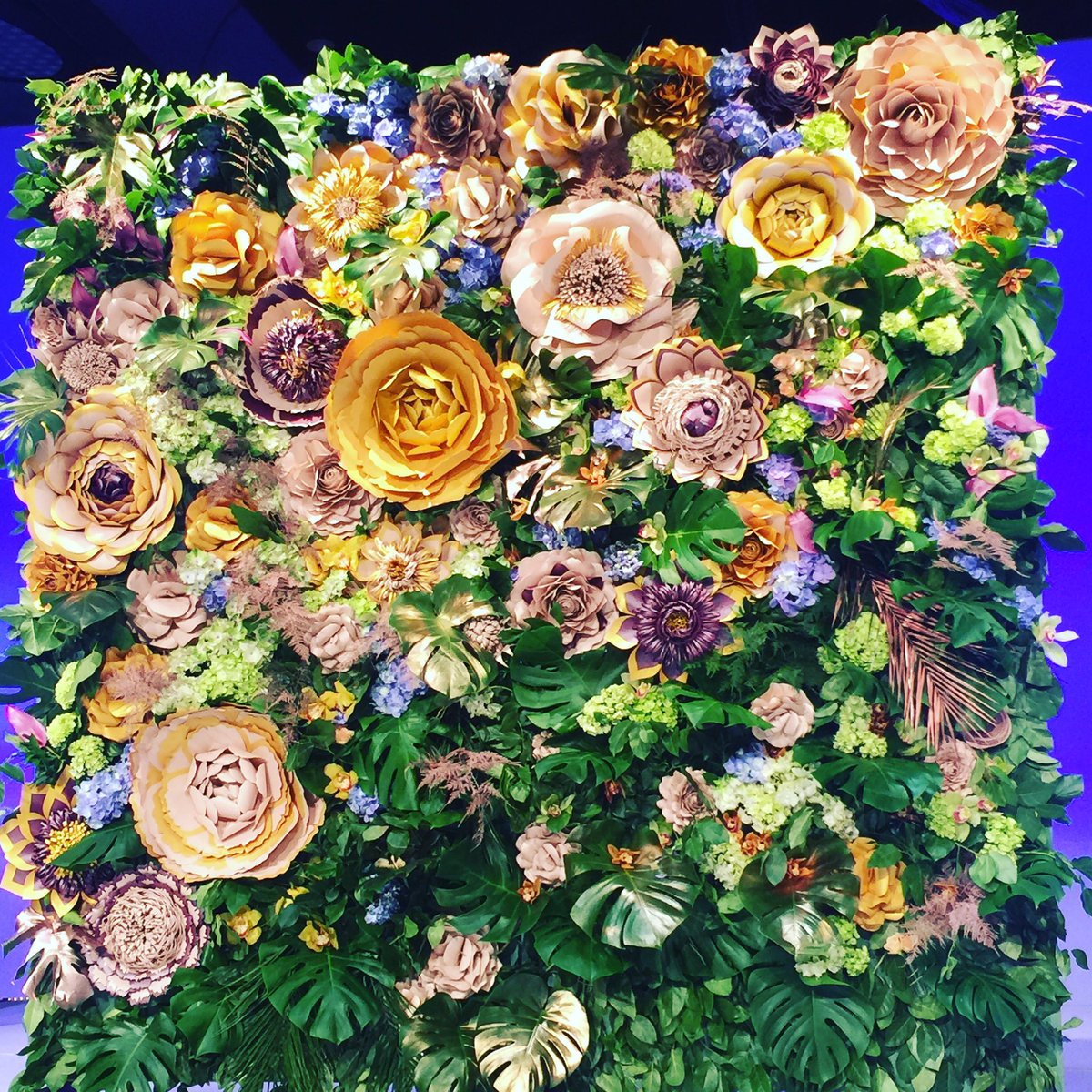 Floralwall Hashtag On Twitter