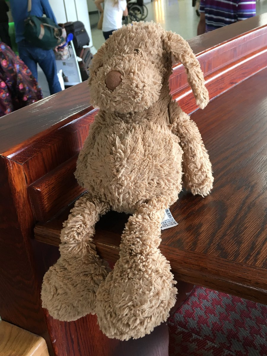 Did you leave your soft toy in @CostaCoffee landside in #bhx today? If so tweet us back! #losttoy https://t.co/ueCZCHHAqc
