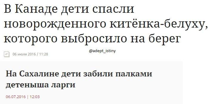 """Главари боевиков """"ДНР"""" активно практикуют аресты и методы физического воздействия на подчиненных, - ИС - Цензор.НЕТ 2999"""