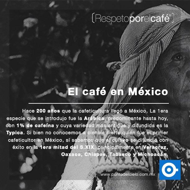 Cafe Punta Del Cielo On Twitter El Cafe Es Toda Una Tradiciondescubrela En Libroel Gran Cafe De Mexico Https T Co Qovuzghm Respetoporelcafe