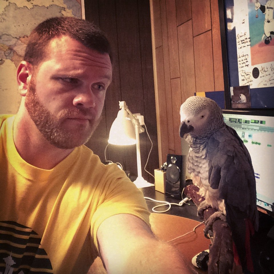 Need help in Bellevue! Koko, my 24 y/o African Grey Parrot flew away tonight. Info here https://t.co/wcKc1T9AHo https://t.co/fdL1W5Sbb4