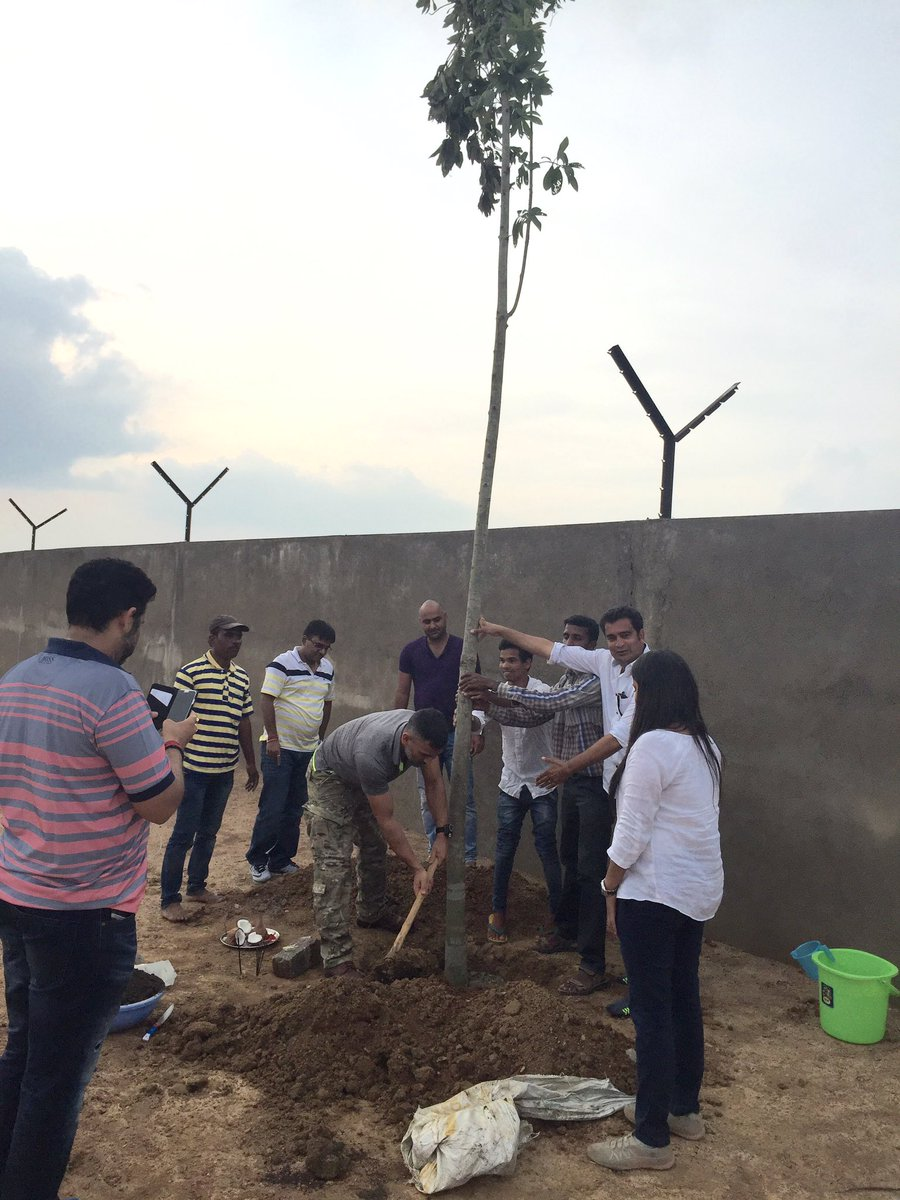 What could be the best way to celebrate my birthday,planted the 1st and very spl tree at the farm house KAILASHPATI