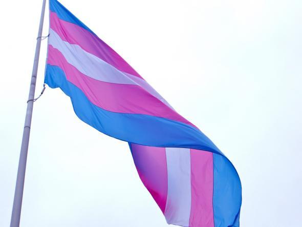 Trans Equality Flag