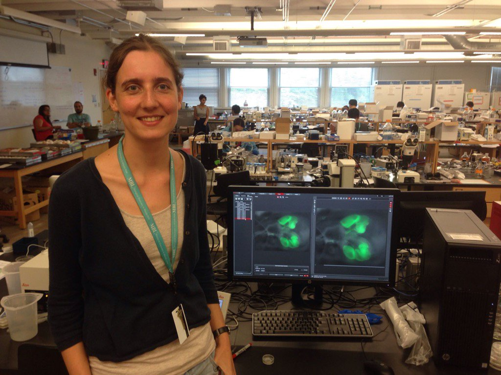 Carine Stapel #embryo2016 with her successful GFP neural tube graft in chick embryo @MBLScience @LeicaMicro  https://t.co/RiAOl26qI2