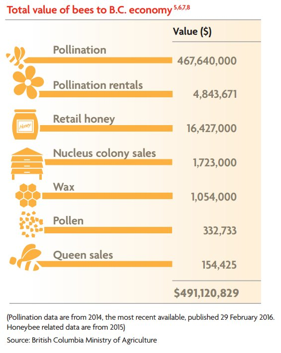 [REPORT] BC's #bees generate nearly $500M in economic activity - potential for more https://t.co/51wYBuh1i5 #bcpoli https://t.co/z2BXkiEATX