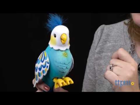 moose little live pets интерактивная говорящая птичка в домике