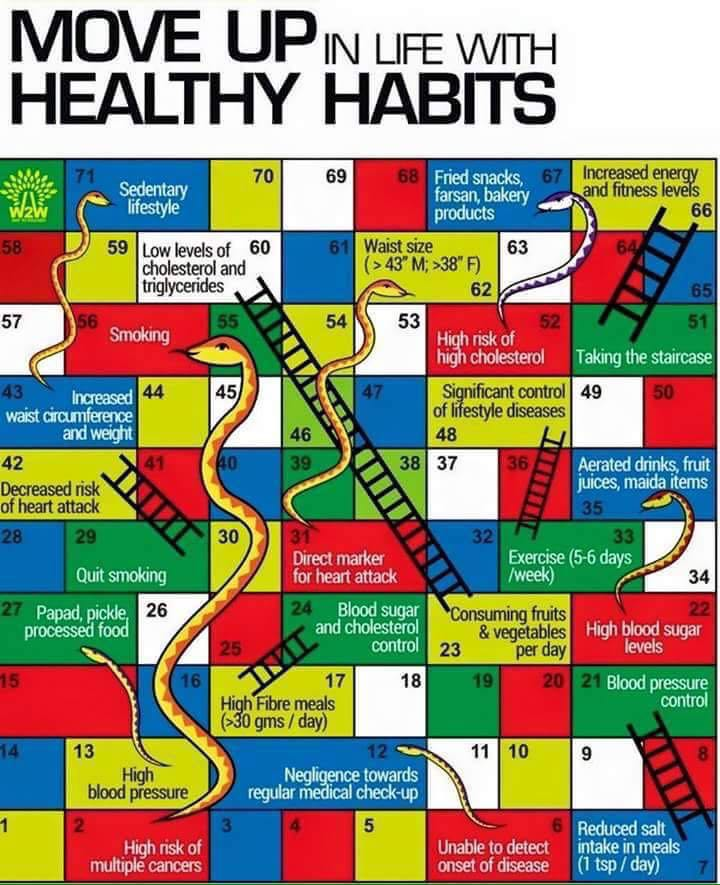 move up in life healthy habits anirudh sethi report move up in life healthy habits