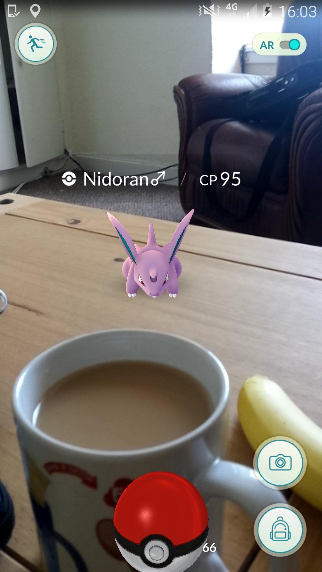 Get away from my tea! #PokemonGO #pokemon #VR #tea https://t.co/OqmHGAP3wI