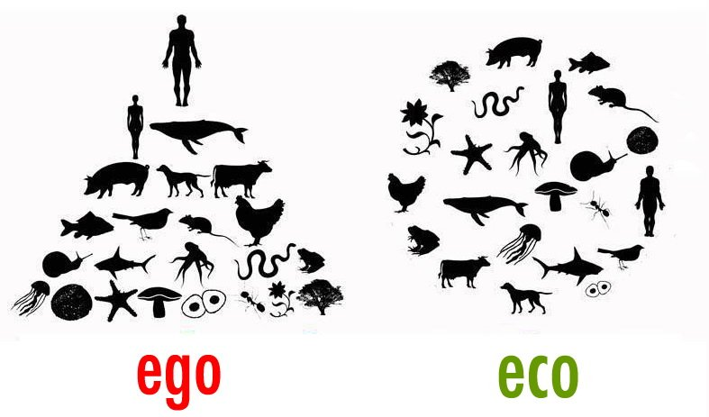 Always liked this one. Ego vs Eco -- good stuff! https://t.co/efrXsyRUgq