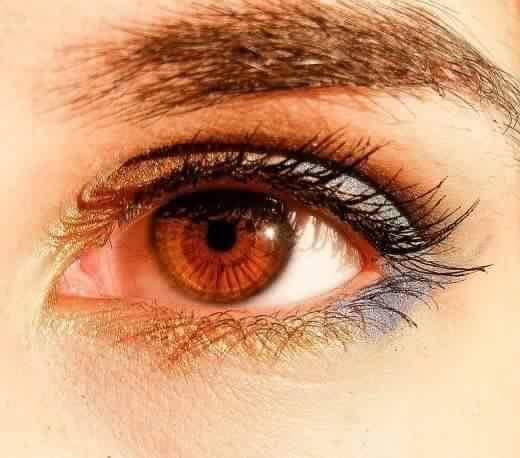نتيجة بحث الصور عن العيون البنية في الشمس