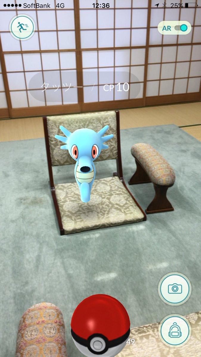 ポケモンが、「GO」を打ちに幽玄の間に現われたっ!  #PokemonGO #ポケモンGO https://t.co/cN5POXSz9D