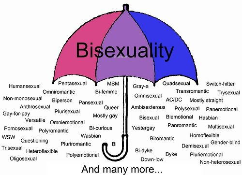 Skoliosexual huffington post
