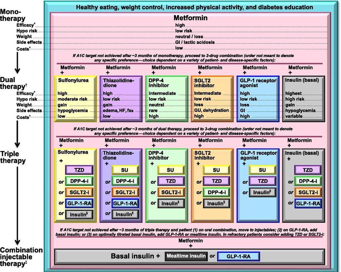 tratamiento de algoritmo de diabetes