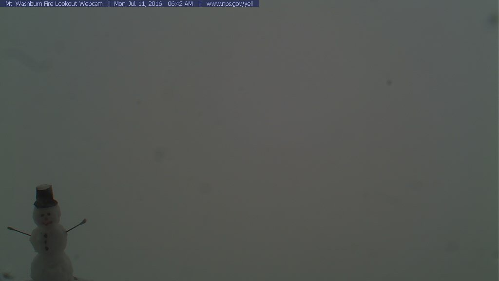 Look what we found on top Mt. Washburn (elev. 10,268 ft) in Yellowstone Nat'l Park this morning. #wywy #snowinJuly