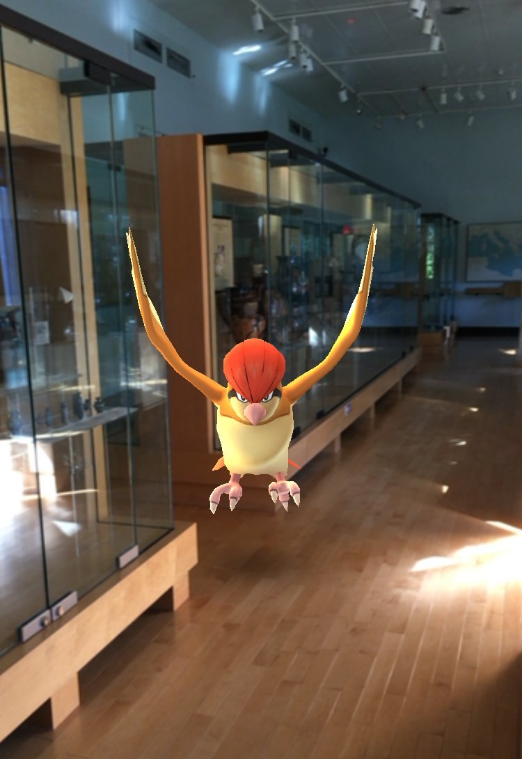A bit of an infestation at the Museum! Good thing we're closed on Mondays. https://t.co/TjciTZxkDy