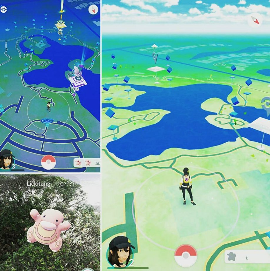 With 15 PokéStops + 2 gyms, Morikami is perfection! Come by tomorrow & catch 'em all! #PokemonGo #Pokemon https://t.co/JpgmH5Osut