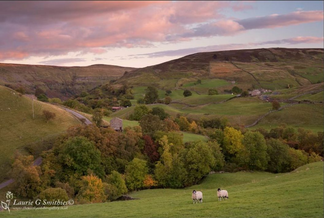 Keld in Swaledale  #ReasonstoLiveinYorkshire  Check out #the_north_yorkshire_gallery     https://www. instagram.com/p/BDiP7fFxWh4/  &nbsp;  <br>http://pic.twitter.com/URFKxoP5ri