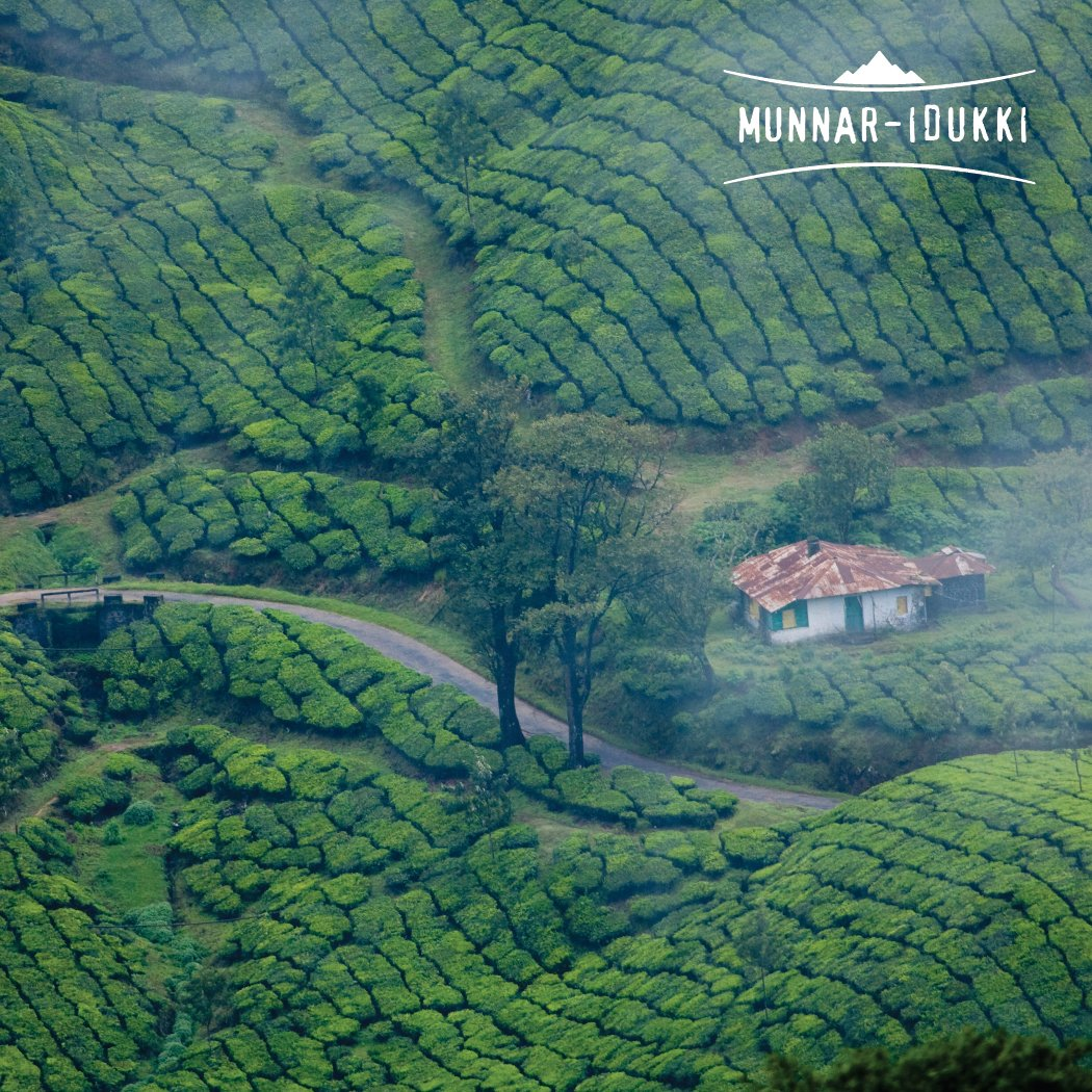 If you haven't seen this you haven't seen the best hill station in India #ദൈവത്തിന്റെസ്വന്തംനാട് #Munnar https://t.co/sOvfETO9xx
