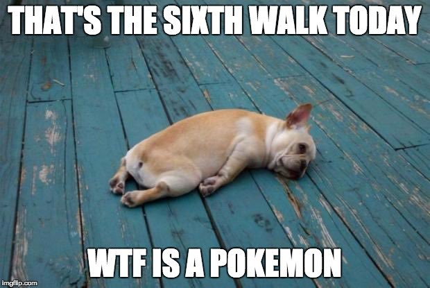One of the cutest #PokemonGO memes we've seen https://t.co/TJ5XhvEasF