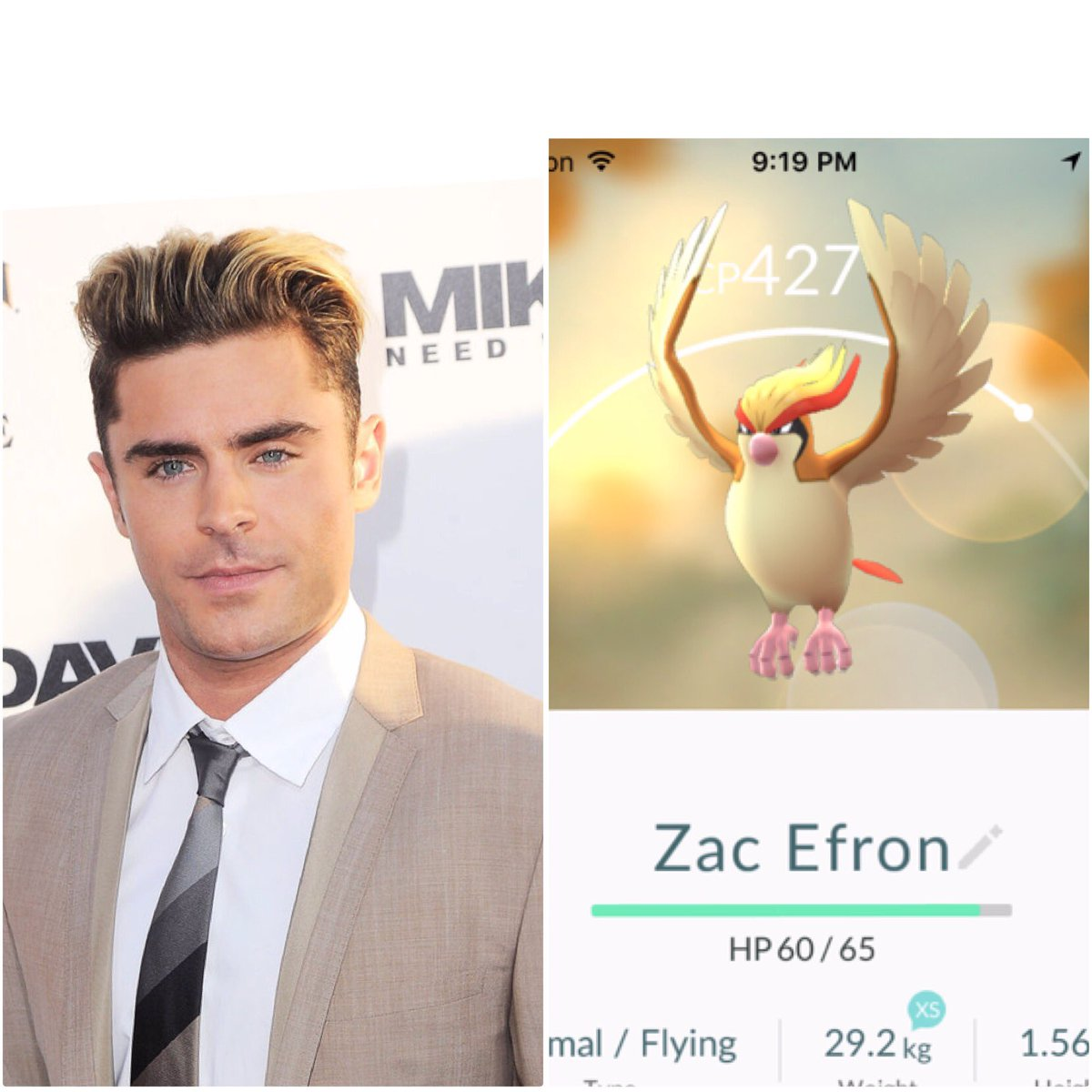 Mason Handa On Twitter Zac Efron Thinks He Can Rip Off Pidgeots