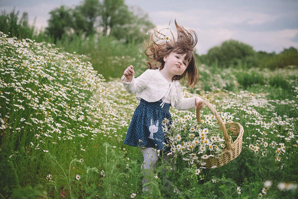 девочка, поле, ромашки, венок, букет загрузить