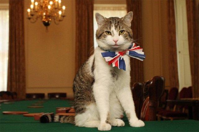 メイ首相就任後もイギリス首相官...