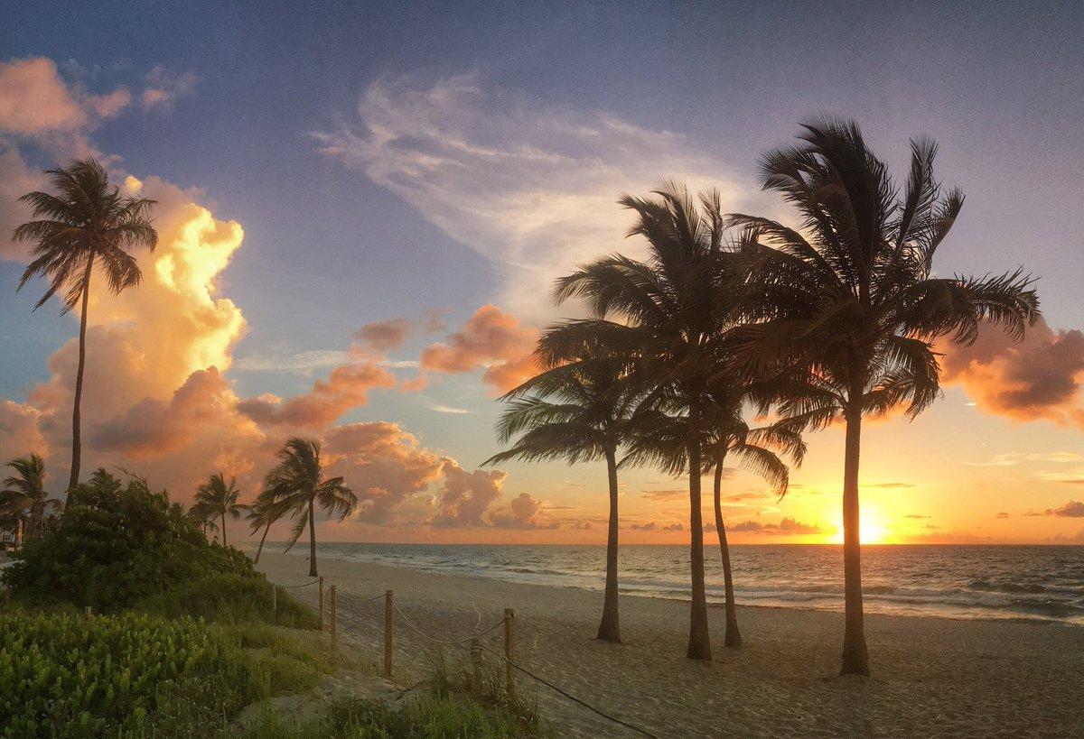 Quiet beach awaking. https://t.co/PVitTanrLc