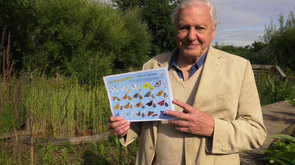 David Attenborough launching #ButterflyCount here this morning. Come and get your free spotter sheet to take part! https://t.co/OGW7nvDZAk