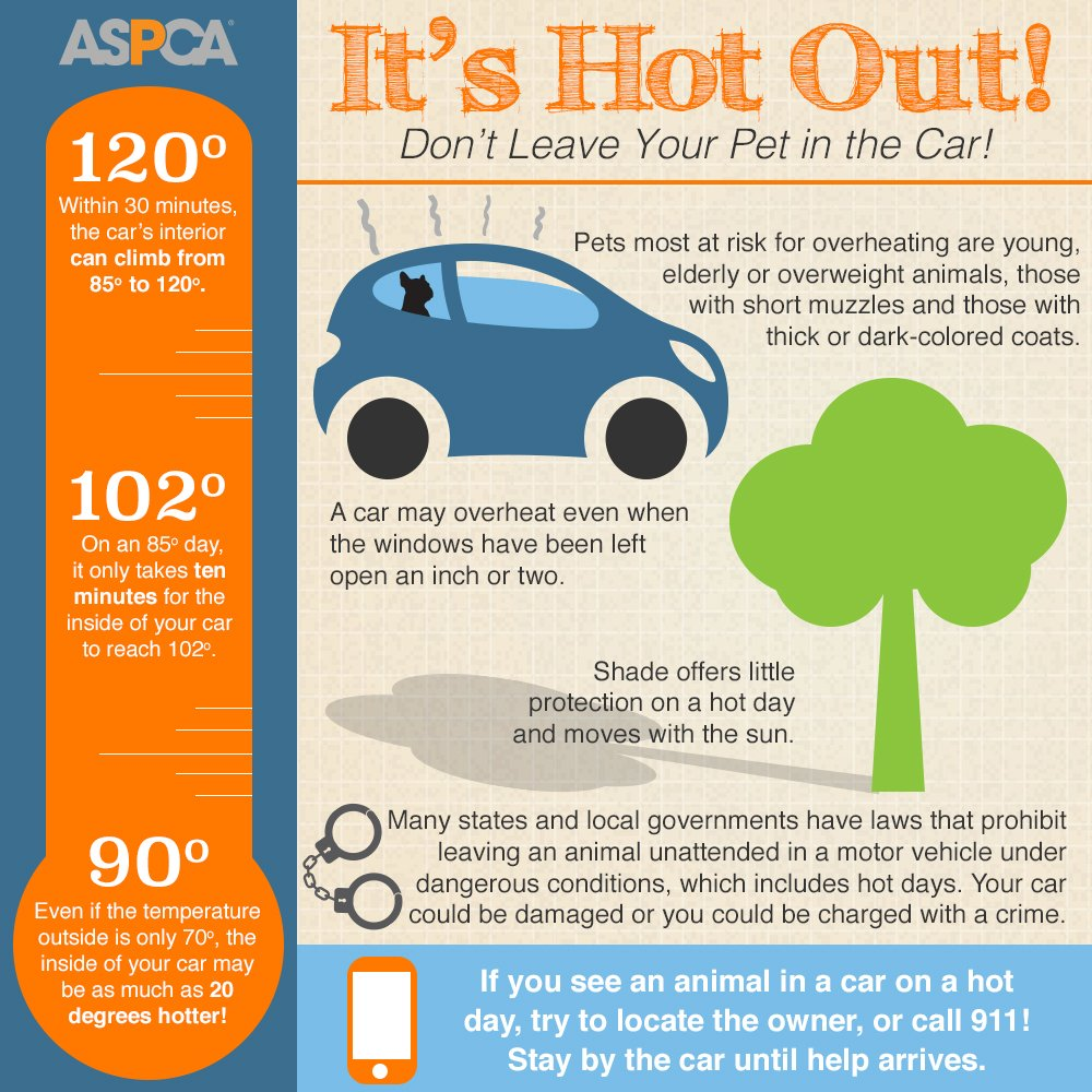 Dangerously high temps are expected throughout the weekend. Please do not leave #pets alone in the car! Please RT!